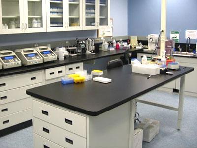 phenol-formaldehyde-resin-properties-lab